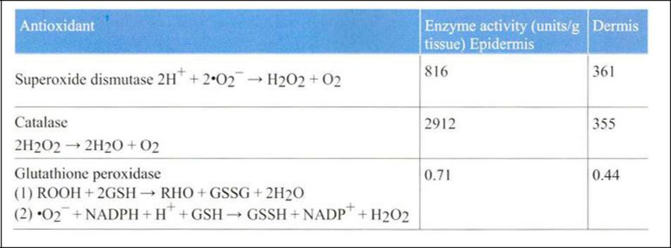 Bảng 24-3 Human Skin Enzymatic Antioxidant Defense System