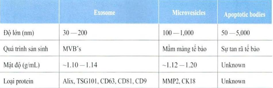 Bảng 3-1: Selenium Protein và mô phân phối Cellular and Molecular Life Sciences 20ll;68(16):2667-88