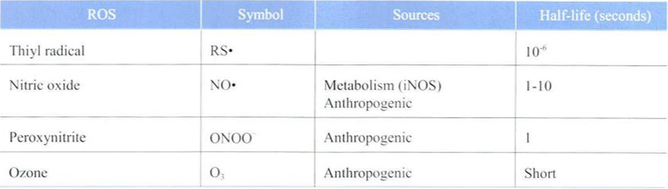Bảng 24-1 Key Reactive Oxidizing Species Relevant to the Skin