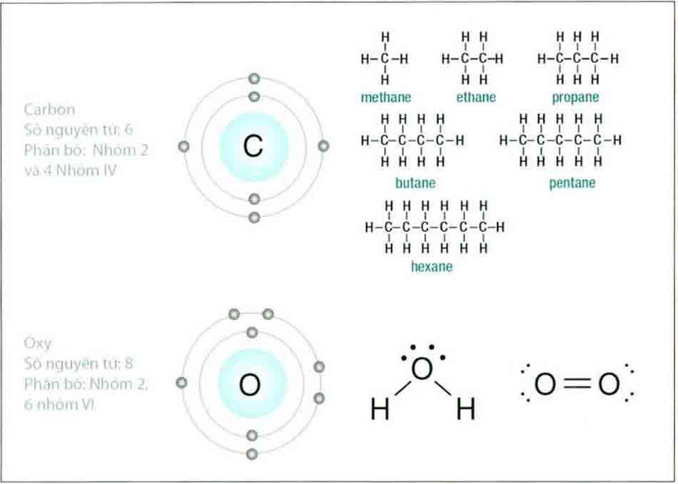 Hình 6-14 Cấu trúc liên kết của carbon nhóm 4 và oxy nhóm 6