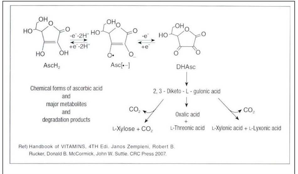 Hình 6-2 Phản ứng oxi hóa khử và quá trình phát thải của vitamin C