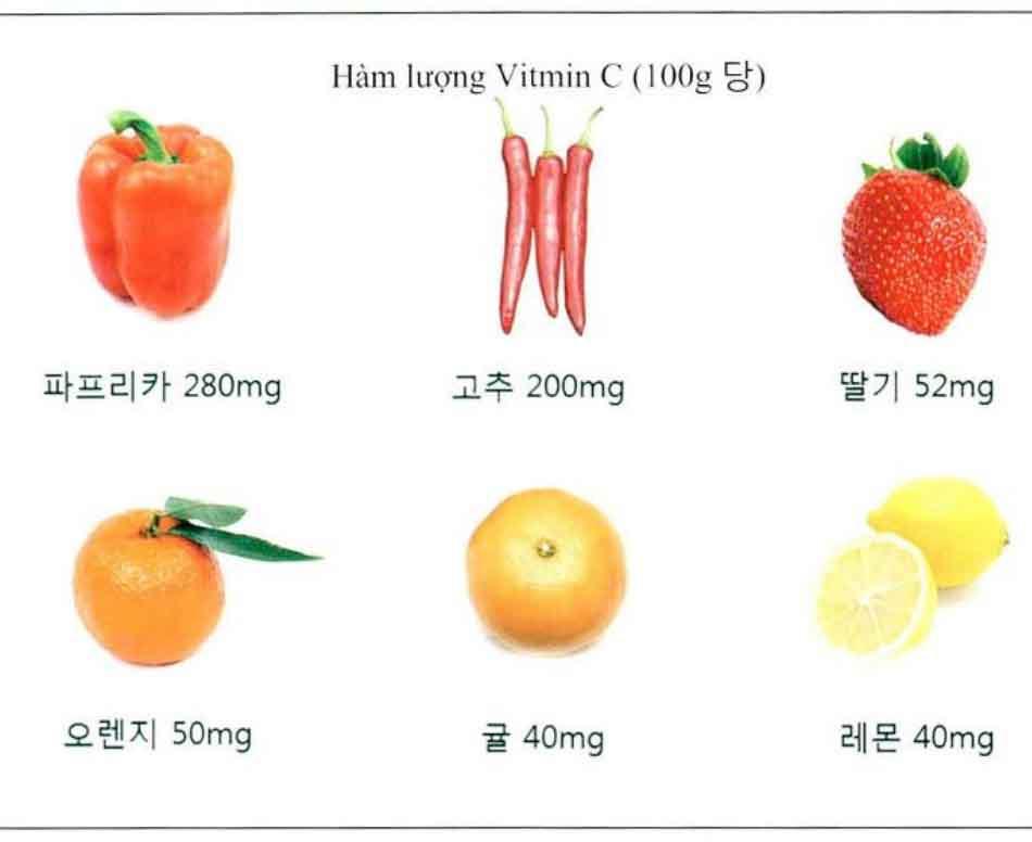Hình-6-3 Hàm lượng vitamin C của các loại rau hoặc trái cây điển hình trên 100g