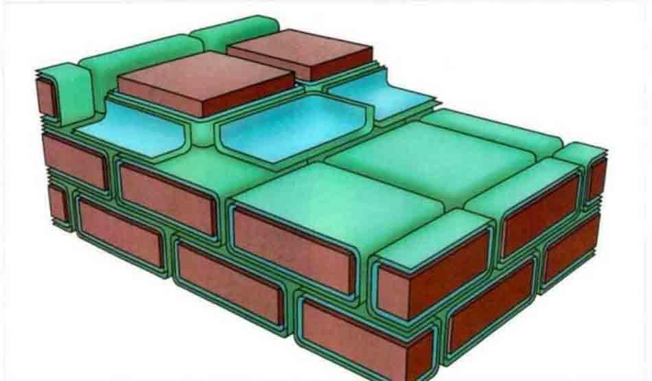 Hình 9-1 Mô hình hàng rào bảo vệ da truyền thống lớp sừng và tế bào lớp sừng (brick), chất béo (mortar)